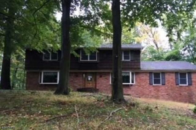 35 Pine Hill Rd, Old Tappan Boro, NJ 07675 (MLS #3510913) :: William Raveis Baer & McIntosh
