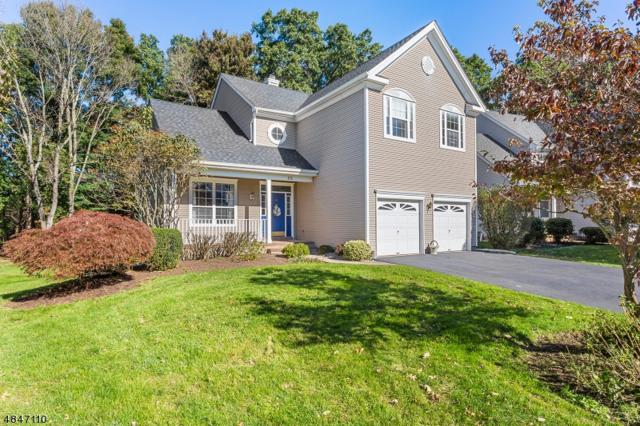 53 Bouwrey Pl, Readington Twp., NJ 08889 (MLS #3511006) :: Pina Nazario