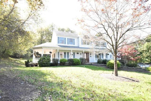 4 Pfauth Dr, Bethlehem Twp., NJ 08826 (#3511073) :: Jason Freeby Group at Keller Williams Real Estate