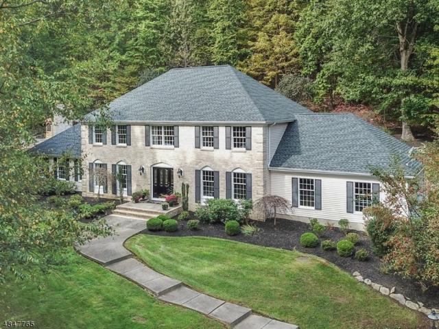 36 Squire Hill Rd, Washington Twp., NJ 07853 (MLS #3511280) :: Team Francesco/Christie's International Real Estate