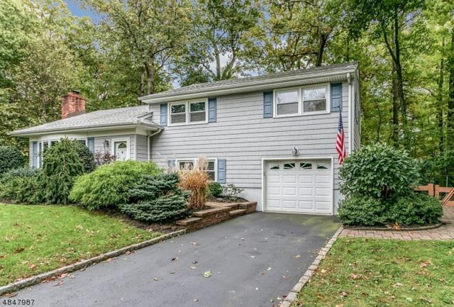 16 Ridge Way, Fanwood Boro, NJ 07023 (MLS #3511439) :: The Dekanski Home Selling Team