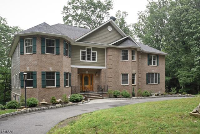 12 Kosakowski Dr, Morris Plains Boro, NJ 07950 (MLS #3512264) :: SR Real Estate Group