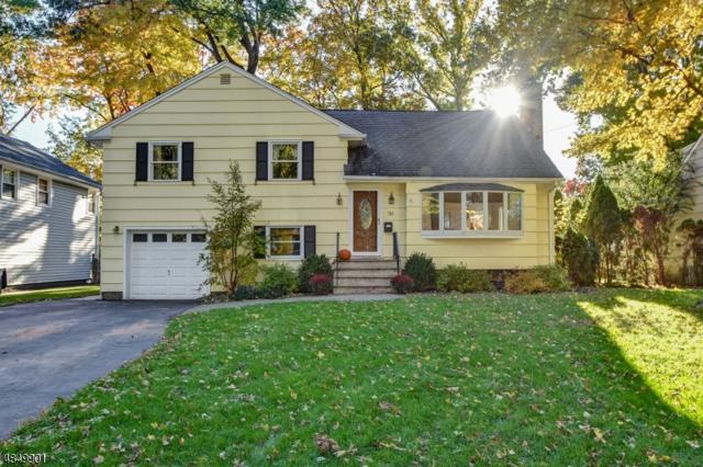 733 Willow St, Cranford Twp., NJ 07016 (#3513542) :: Daunno Realty Services, LLC