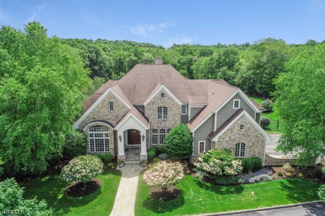 280 Mountain Rd, Bernards Twp., NJ 07920 (MLS #3513763) :: SR Real Estate Group