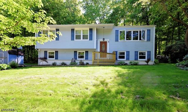 8 Sycamore Ci, Hardyston Twp., NJ 07419 (#3514265) :: Group BK