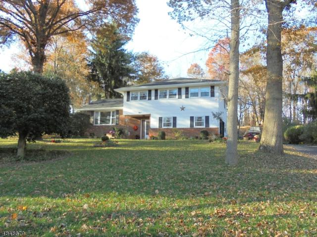 9 Morningside Dr, Roxbury Twp., NJ 07876 (MLS #3514477) :: William Raveis Baer & McIntosh