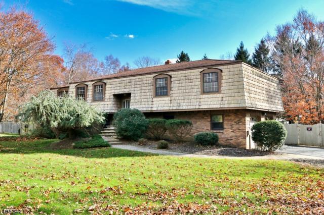 195 S Hillside Ave, Roxbury Twp., NJ 07876 (MLS #3515634) :: The Dekanski Home Selling Team