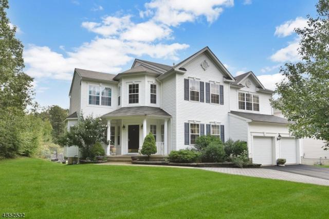 876 Ravine Road, Jefferson Twp., NJ 07849 (MLS #3515663) :: William Raveis Baer & McIntosh