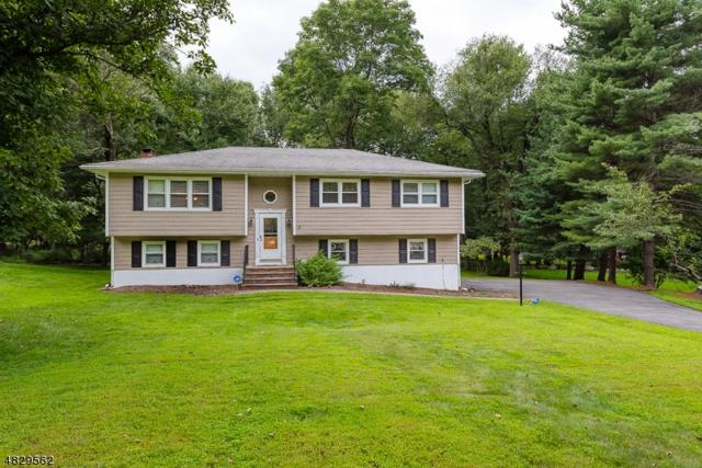 4 Black Birch Dr, Randolph Twp., NJ 07869 (MLS #3515738) :: The Sikora Group