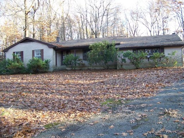 75 Pleasant Grove Rd, Washington Twp., NJ 07853 (MLS #3515748) :: William Raveis Baer & McIntosh