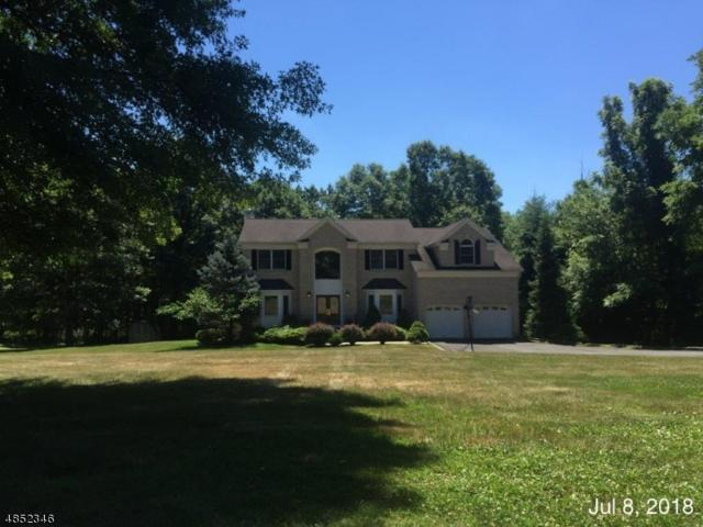 581 River Rd, Chatham Twp., NJ 07928 (MLS #3515752) :: The Sikora Group