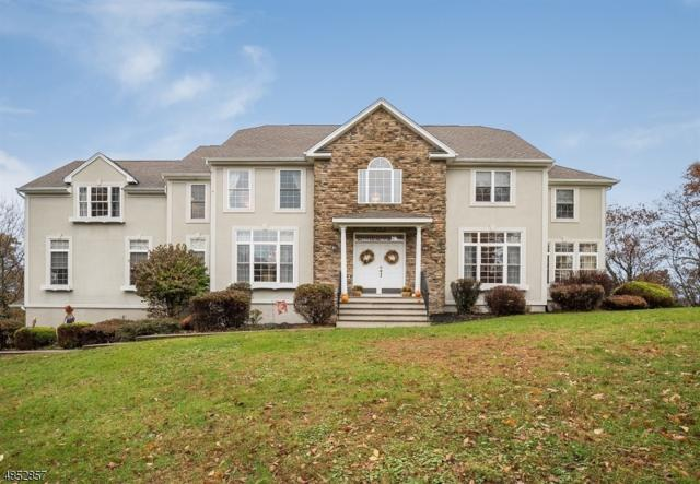 3 Oak Hollow Ln, Sparta Twp., NJ 07871 (MLS #3515953) :: William Raveis Baer & McIntosh