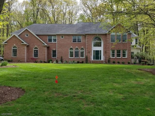 3 Brandywine Ct, Randolph Twp., NJ 07869 (MLS #3516242) :: The Sikora Group