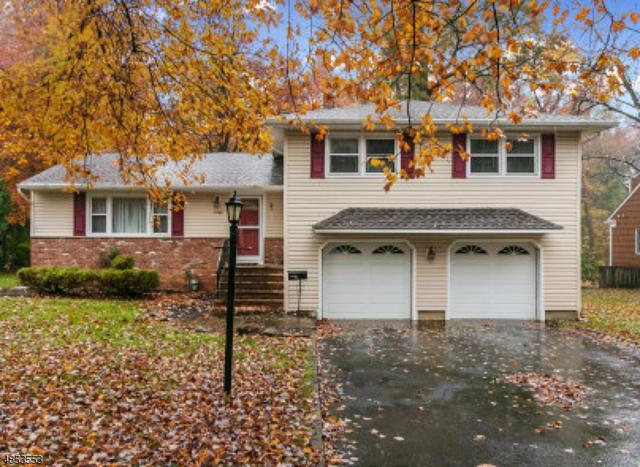 1088 Saddle Brook Rd, Mountainside Boro, NJ 07092 (MLS #3516642) :: The Dekanski Home Selling Team