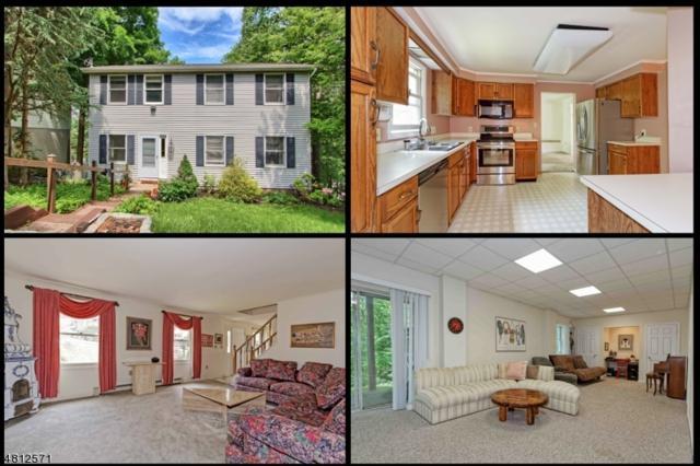 58 Erie Ave, Rockaway Twp., NJ 07866 (MLS #3516892) :: SR Real Estate Group