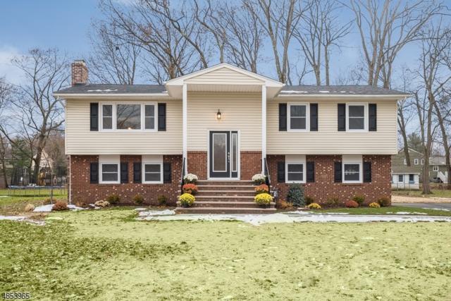 8 Whitegate Rd, Roxbury Twp., NJ 07876 (MLS #3517058) :: The Dekanski Home Selling Team