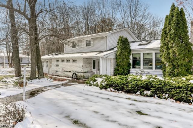 3 Longview Dr, Rockaway Twp., NJ 07866 (MLS #3517285) :: William Raveis Baer & McIntosh
