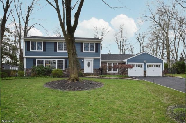31 Murphy Cir, Florham Park Boro, NJ 07932 (MLS #3517653) :: SR Real Estate Group