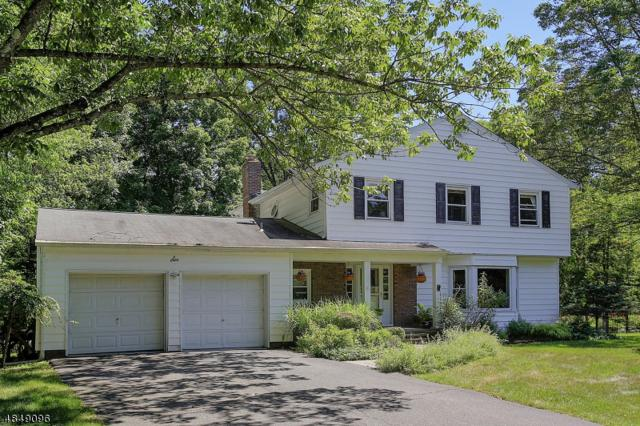 6 Holly Dr, Randolph Twp., NJ 07869 (MLS #3518525) :: Coldwell Banker Residential Brokerage