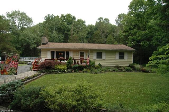155 Decker Pond Rd, Green Twp., NJ 07821 (MLS #3518590) :: William Raveis Baer & McIntosh