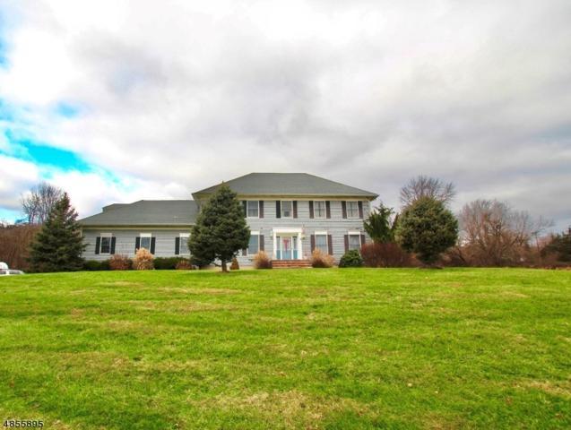 58 Woodschurch Rd, Readington Twp., NJ 08885 (MLS #3518989) :: Kiliszek Real Estate Experts