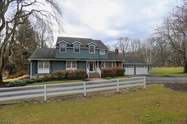 452 Route 24, Chester Twp., NJ 07930 (MLS #3519391) :: William Raveis Baer & McIntosh