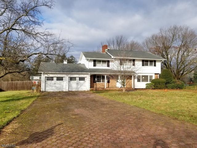 25 Clear View Dr, Randolph Twp., NJ 07869 (MLS #3519574) :: The Douglas Tucker Real Estate Team LLC