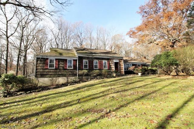 48 Mt View Dr, Chester Twp., NJ 07930 (MLS #3519664) :: William Raveis Baer & McIntosh
