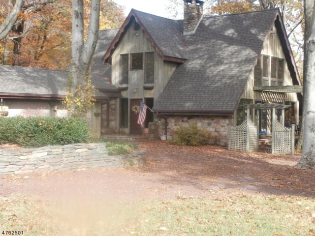 581 581 County Road 579, Union Twp., NJ 08827 (MLS #3519705) :: The Dekanski Home Selling Team