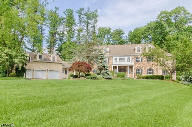 3 Reservoir Ridge Rd, Mendham Twp., NJ 07960 (MLS #3519706) :: SR Real Estate Group