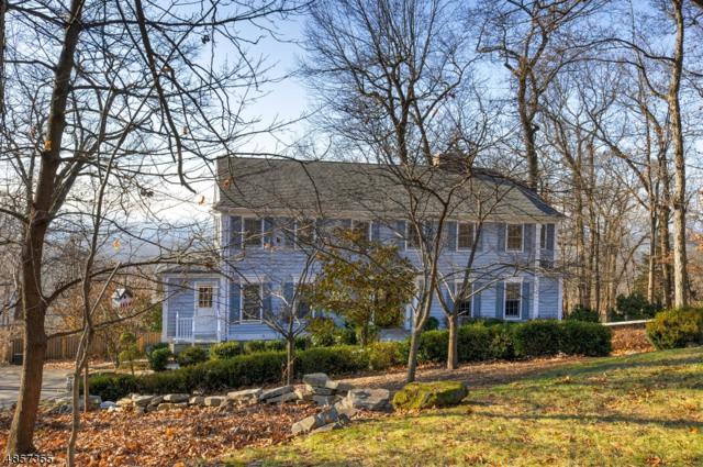 991 Crim Rd, Bridgewater Twp., NJ 08807 (MLS #3520279) :: Vendrell Home Selling Team