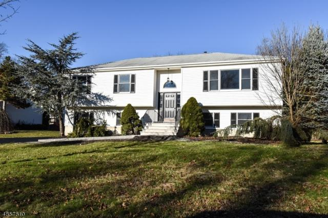 10 Patrician Ct, Parsippany-Troy Hills Twp., NJ 07054 (MLS #3520296) :: SR Real Estate Group