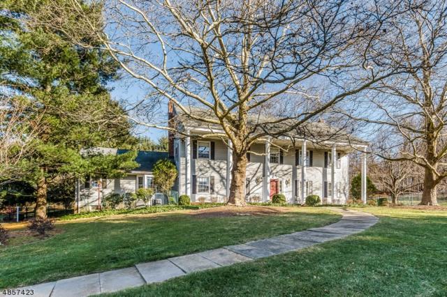 81 Roebling Rd, Bernardsville Boro, NJ 07924 (MLS #3520321) :: Vendrell Home Selling Team