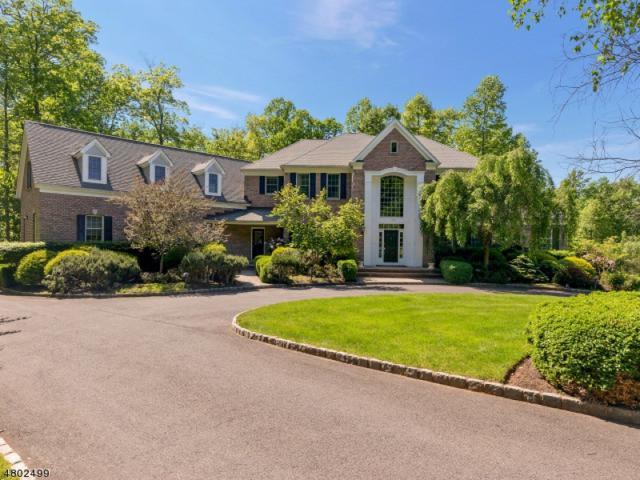 19 Rockage Rd, Warren Twp., NJ 07059 (MLS #3520504) :: SR Real Estate Group