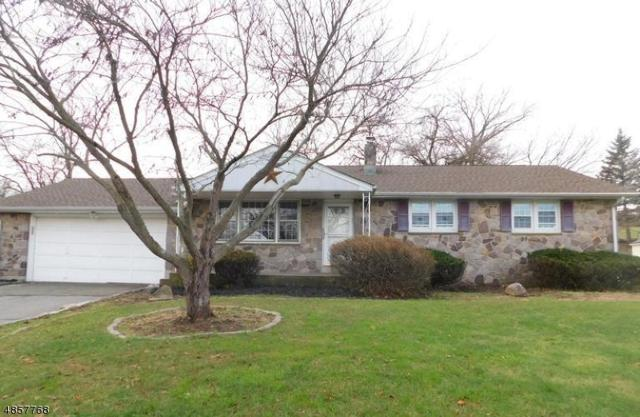 12 Mcentee Rd, Holland Twp., NJ 08848 (#3520517) :: Jason Freeby Group at Keller Williams Real Estate