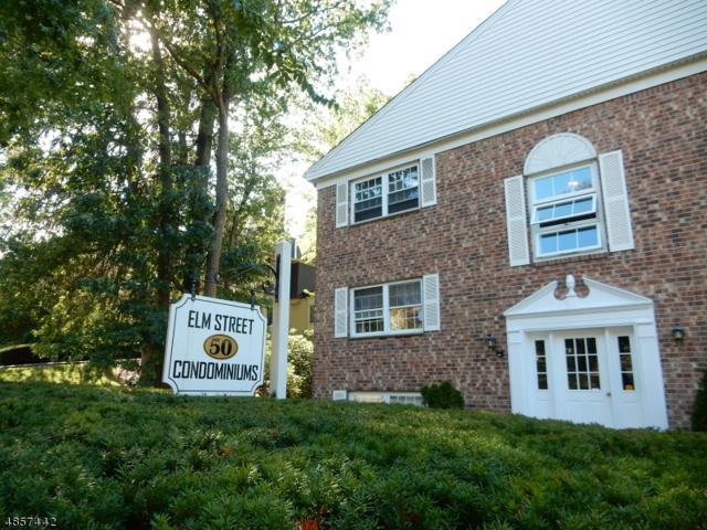 50 Elm St Apt A7 A7, Morristown Town, NJ 07960 (MLS #3520538) :: The Sikora Group