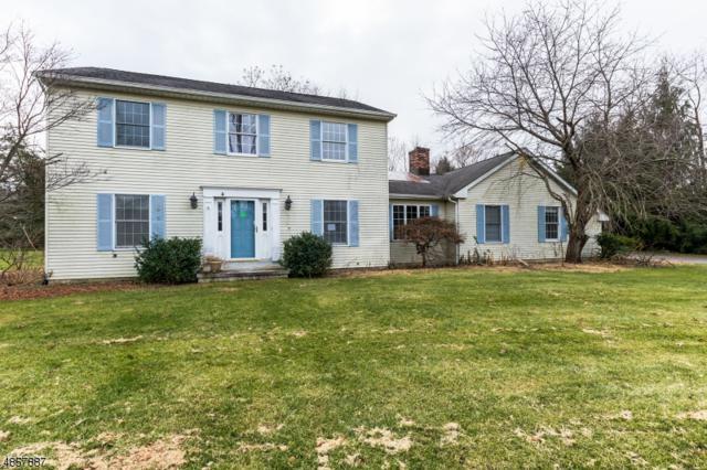 6 Ivan Rd, Knowlton Twp., NJ 07832 (#3520630) :: Jason Freeby Group at Keller Williams Real Estate