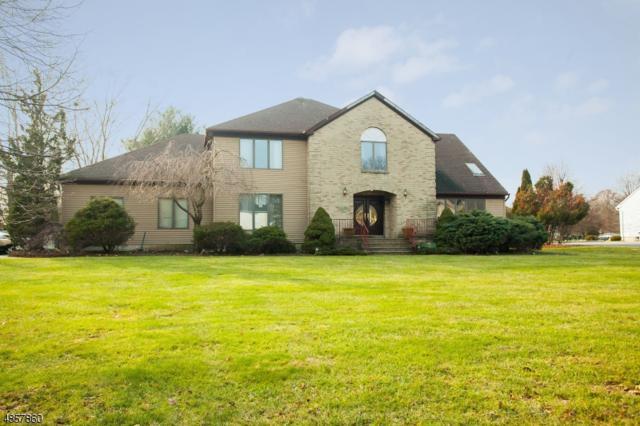 43 Winchester Dr, Scotch Plains Twp., NJ 07076 (MLS #3520634) :: The Dekanski Home Selling Team