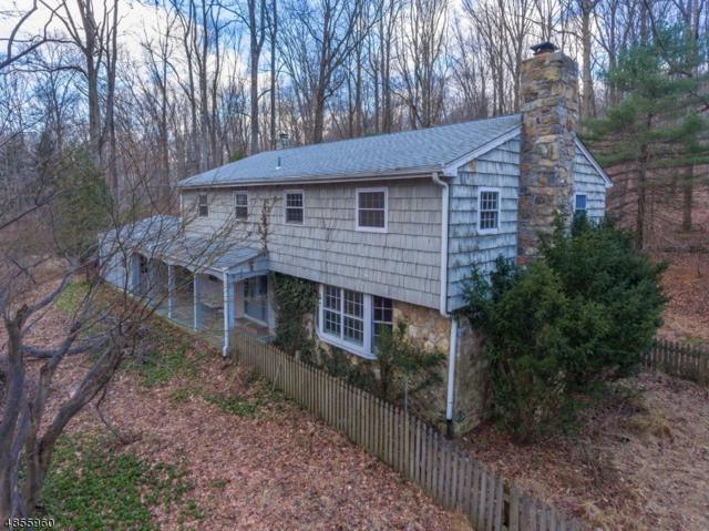 31 Saw Mill Rd, Tewksbury Twp., NJ 08833 (#3520705) :: Jason Freeby Group at Keller Williams Real Estate