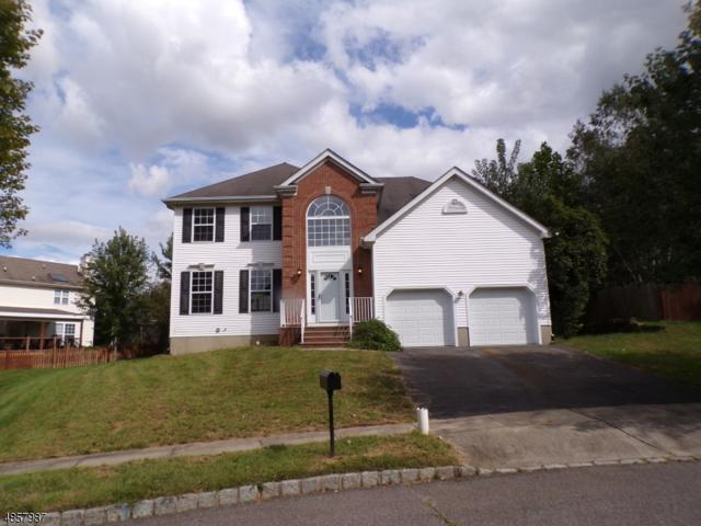 240 Natalie Drive, Phillipsburg Town, NJ 08865 (#3520746) :: Jason Freeby Group at Keller Williams Real Estate