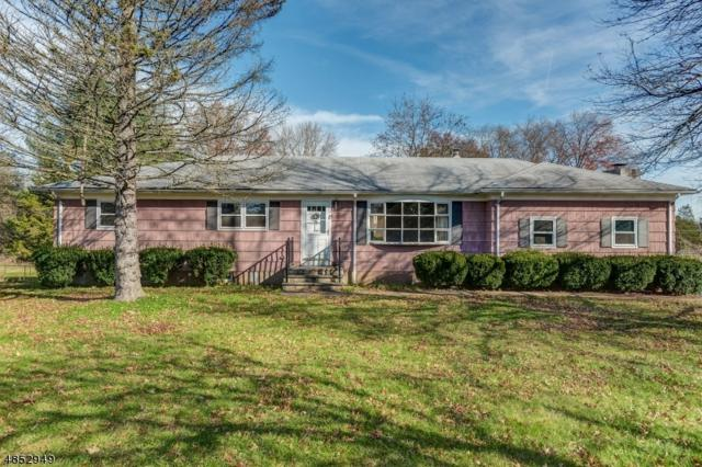 15 Central Ave, Readington Twp., NJ 08889 (#3520763) :: Jason Freeby Group at Keller Williams Real Estate