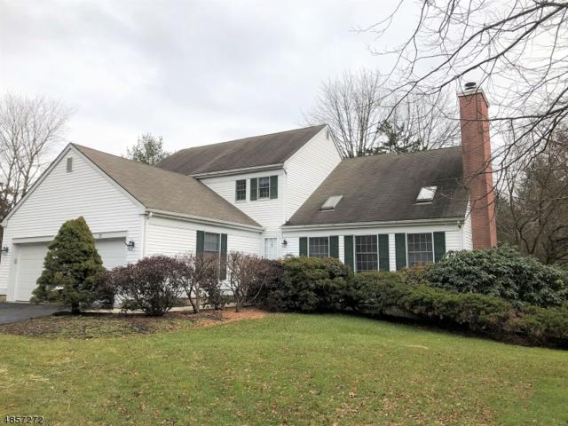 11 Hampton Ct, Bernards Twp., NJ 07920 (MLS #3520804) :: The Dekanski Home Selling Team
