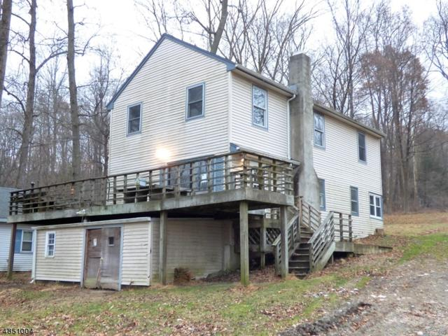 54 Lakeview Ave, Hope Twp., NJ 07825 (#3520875) :: Daunno Realty Services, LLC