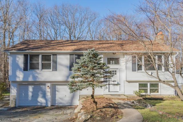 23 E Birch Dr, Vernon Twp., NJ 07422 (MLS #3521375) :: The Dekanski Home Selling Team
