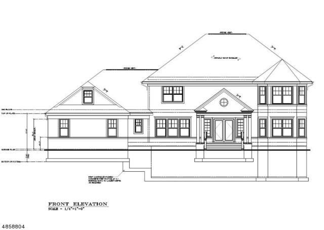 39 Alpine Rd New Home, Montville Twp., NJ 07082 (MLS #3521412) :: Pina Nazario