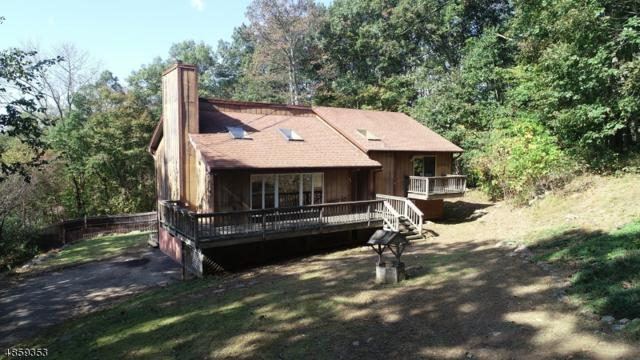 2 Leo Ave, Stanhope Boro, NJ 07874 (#3521898) :: Jason Freeby Group at Keller Williams Real Estate