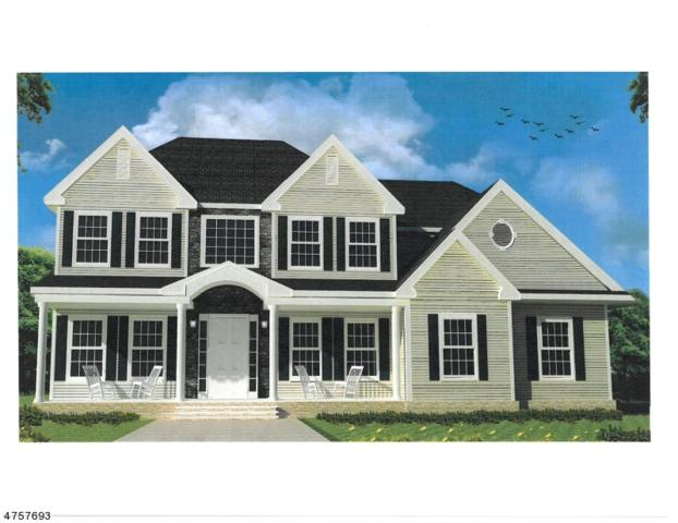 0 Cirrus Lane, Alexandria Twp., NJ 08867 (#3522093) :: Group BK