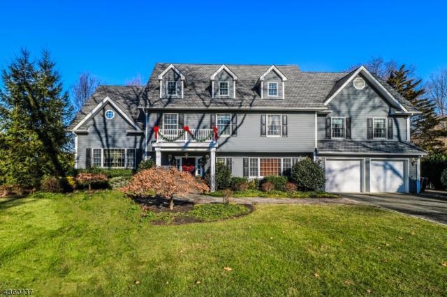 3 Avon Road, Clark Twp., NJ 07066 (#3522579) :: Jason Freeby Group at Keller Williams Real Estate