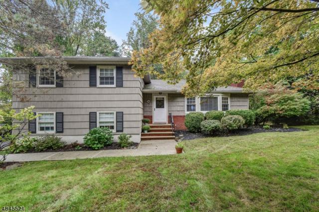705 Glenside Ave, Berkeley Heights Twp., NJ 07922 (MLS #3522678) :: The Sue Adler Team