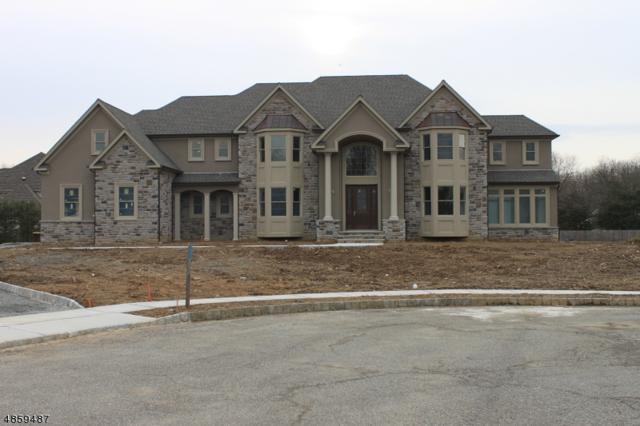 3 Newman Ln, Denville Twp., NJ 07834 (MLS #3522722) :: SR Real Estate Group
